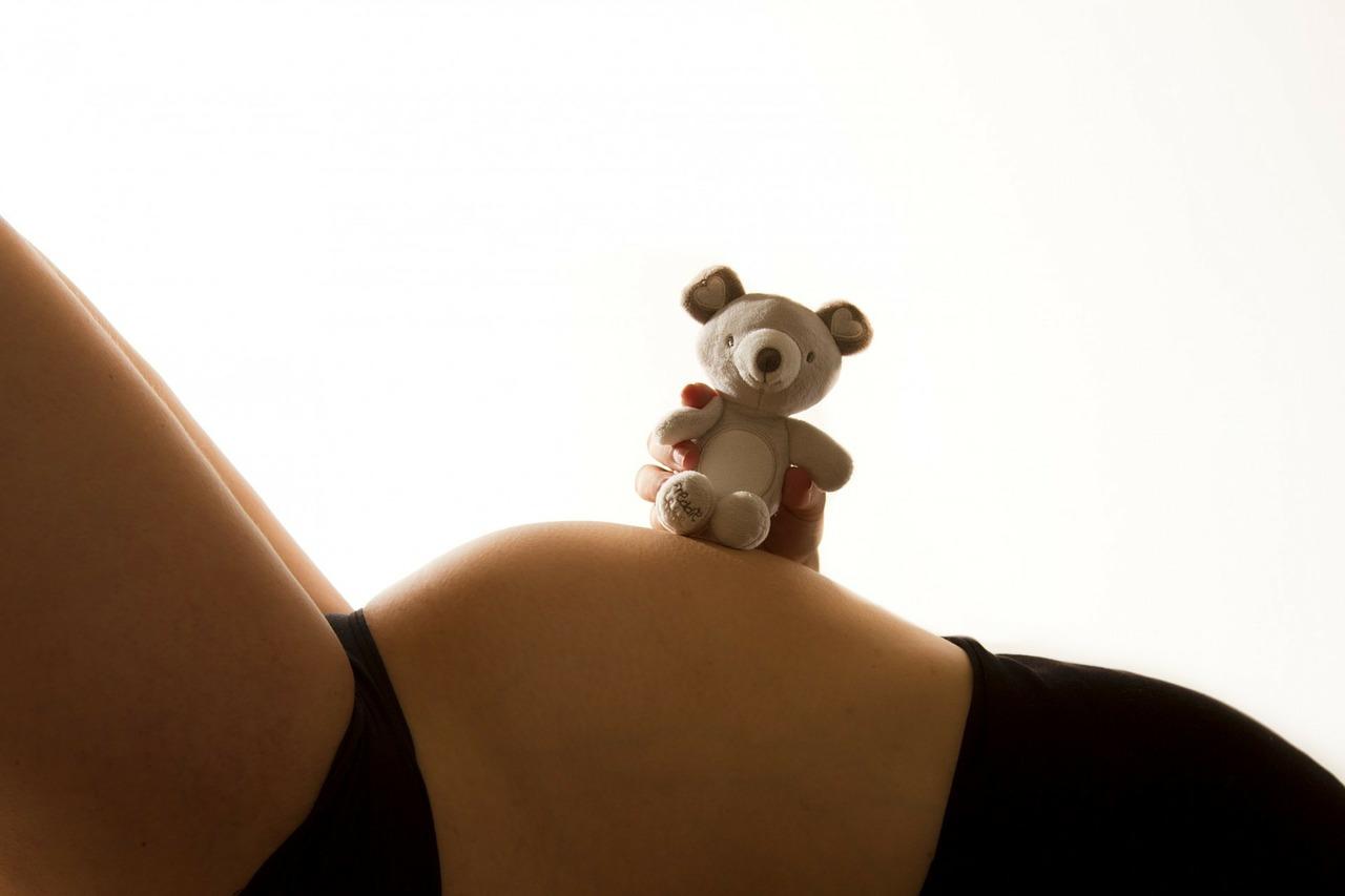 Těhotenství a domácí mazlíčkové